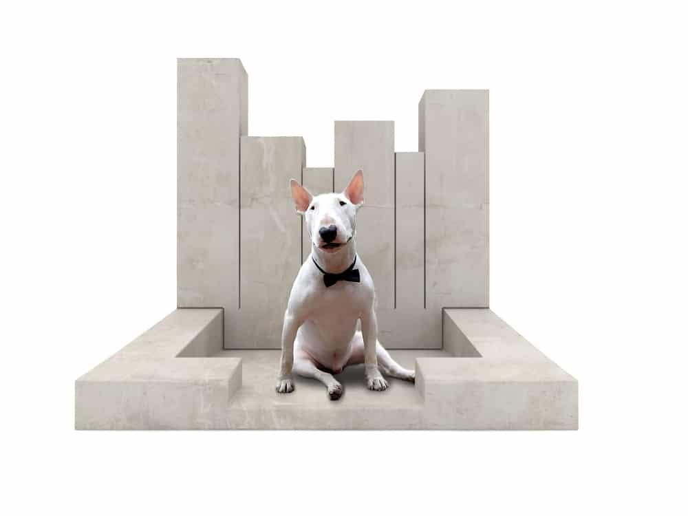 niche-panier-animaux-design-béton